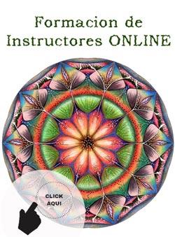 Formacion de Instructores online